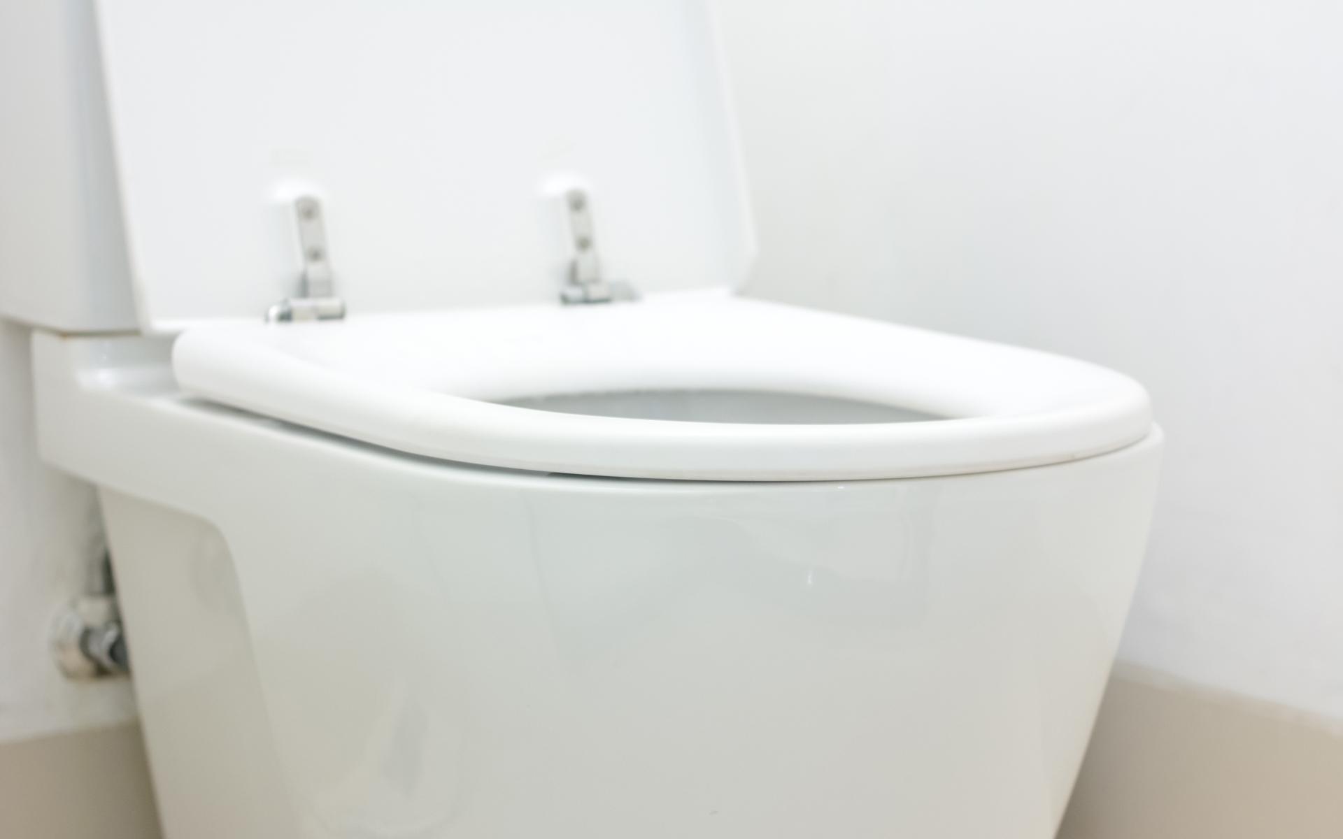 Atlanta Toilet Repair